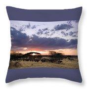 Tarangire Sunset Throw Pillow