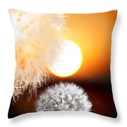 Taraxacum Sunset Throw Pillow