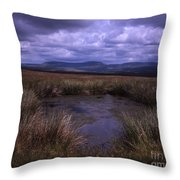 Tarn On The Slopes Of Whernside With Pen-y-ghent On The Horizon Yorkshire Dales England Throw Pillow