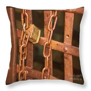 Tarnished Image Throw Pillow