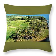Taro Fields Throw Pillow