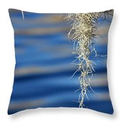 Tarpon Springs Moss Throw Pillow
