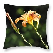 Tasmania Day Lily Throw Pillow