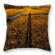 Tasmanian Sunset Explorer Throw Pillow