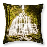 Tasmanian Waterfalls Throw Pillow