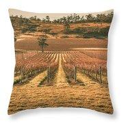 Tasmanian Winery In Winter Throw Pillow
