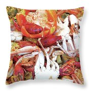Taste Of The Glades Gp Throw Pillow