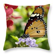 Tasting Colors Throw Pillow