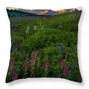 Tatoosh Dawn Throw Pillow