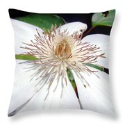 Tattered And Torn Throw Pillow