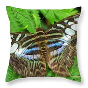 Tattered Beauty Throw Pillow
