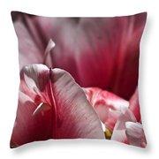 Tattered Tulip Petals Throw Pillow