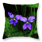 Tattered Wild Violets Throw Pillow