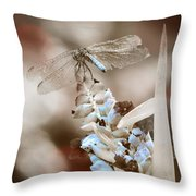 Tattered Wings B1 Throw Pillow