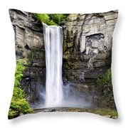 Taughannock Falls Gorge Throw Pillow