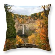 Taughannock Falls Splendor Throw Pillow