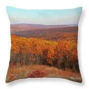 Taum Sauk Mountain Throw Pillow