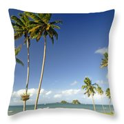 Taveuni Shoreline Throw Pillow