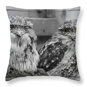 Tawney Frogmouths Throw Pillow