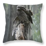 Tawny Frogmouth With It's Eyes Closed And Wing Extended Throw Pillow