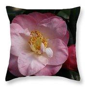 Taylor's Perfection Camellia Throw Pillow