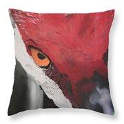 Te Veo Throw Pillow