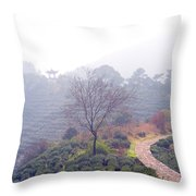 Tea Field Throw Pillow