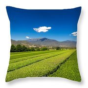 Tea In The Valley Throw Pillow