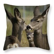 Teach Your Children Well Throw Pillow