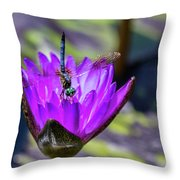 Teal Dragonfly Throw Pillow