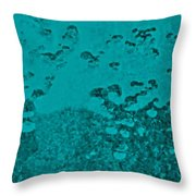 Teal Waters Throw Pillow