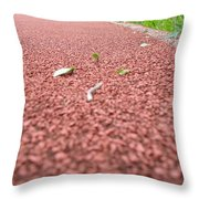 Teamwork On And Off The Track Throw Pillow
