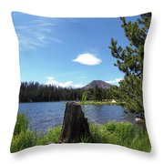 Teapot Lake Throw Pillow