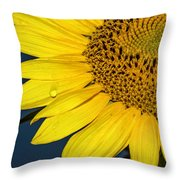 Tear Of The Sun Throw Pillow