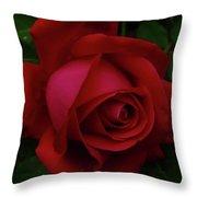 Teardrops Of A Rose Throw Pillow