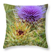 Teasel In Bloom Throw Pillow