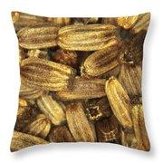 Teasel Seeds Throw Pillow