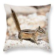 Teasing Chipmunk #3 Throw Pillow