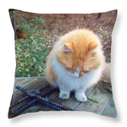Ted In Full Color Throw Pillow