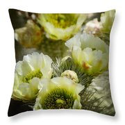 Teddy Bear Cholla-cylindropuntia Bigelovii Throw Pillow