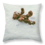 Teddy Bear In Snow Throw Pillow