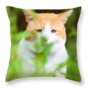 Teddy In The Garden Throw Pillow