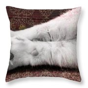 Teddy's Paw Throw Pillow