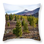 Teide Throw Pillow