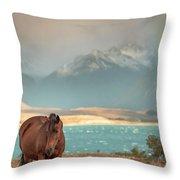 Tekapo Horse Throw Pillow by Chris Cousins