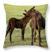 Tell Me A Secret Throw Pillow