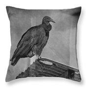 Tell No Tales.. Throw Pillow