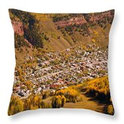 Telluride Throw Pillow