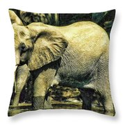 Tembo Throw Pillow
