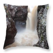 Temperance River State Park Four Throw Pillow